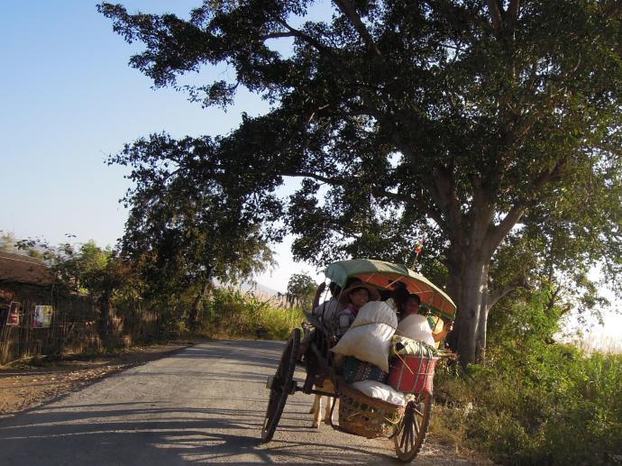 Do celu, okolice Nyaung Shwe, fot. M. Lehrmann