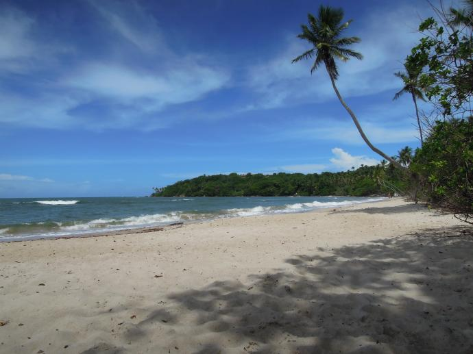 Prawdziwy tropikalny raj, Boipeba, Brazylia, fot. M. Lehrmann