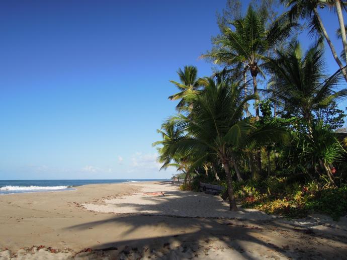 Plaże mamy na wyłączność – w dzień..., fot. M. Lehrmann