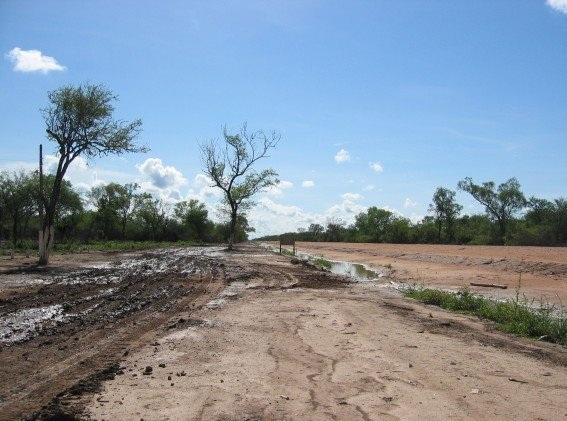Suche tereny chaco. Zdjęcie pochodzi ze strony vanderblij.net