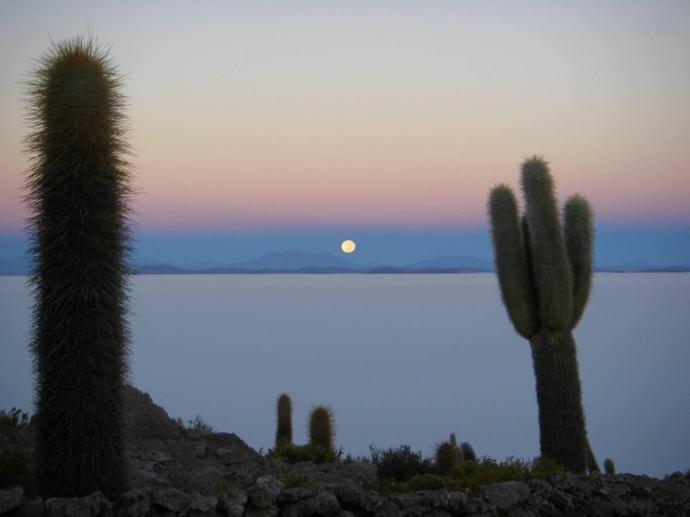 Wyspa Incahuasi, czyli szczyt wulkanu, Salar de Uyuni, Boliwia, fot. Fran A. Acero. Zdjęcie pochodzi ze strony autora http://www.viajeserraticos.com/