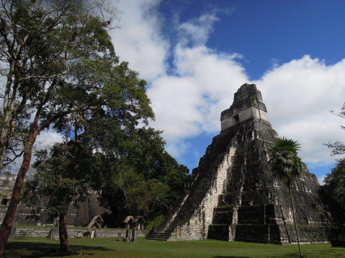 Świątynia Wielkiego Jaguara. Na wieżę nie można wchodzić, ponieważ kilkoro turystów straciło tu życie, Tikal, Gwatemala, fot. M. Lehrmann