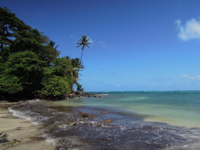 Odcienie błękitu, Little Corn Island, fot. M. Lehrmann