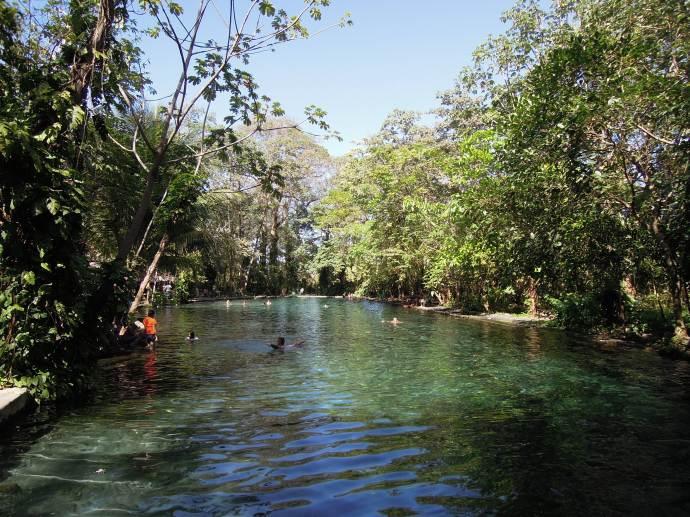 Ojos de Agua, czyli naturalne źródełka, Isla de Ometepe, Nikaragua, fot. A. Mielczarek