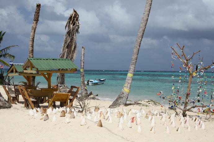 I bardzo dekoracyjne, Little Corn Island, fot. Iona Hodgson