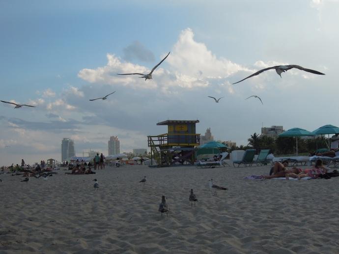 Wieża ratownicza, Miami Beach, fot. M. Lehrmann